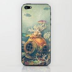 Seachange iPhone & iPod Skin