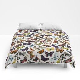 butterfly pattern Comforters