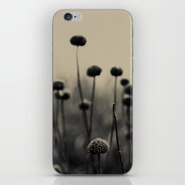Field of Dreams iPhone Skin