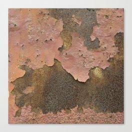 Texture #18 Rust Canvas Print