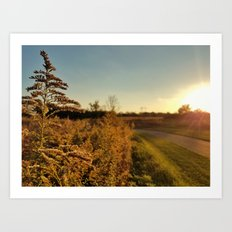 Autumn Fields 2 Art Print