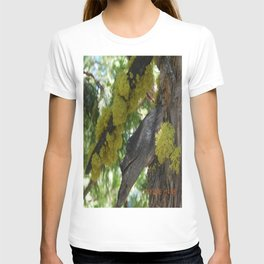 road trip, tree, moss T-shirt