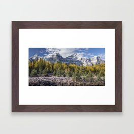 Larch Valley II Framed Art Print
