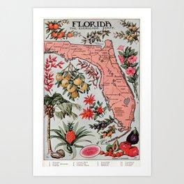Vintage Map of Florida (1917) Art Print