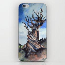 Bristlecone iPhone Skin