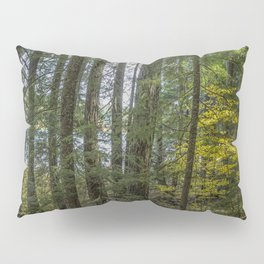 The Woods Around Clear Lake Pillow Sham