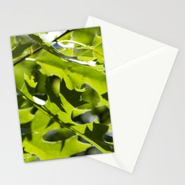 Gradient Stationery Cards