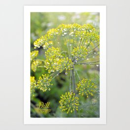 Dill in the garden I Art Print
