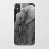 baby elephant iPhone & iPod Cases featuring Baby Elephant by C. Bright