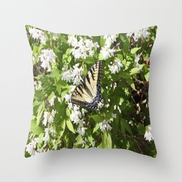 Solo Butterfly Throw Pillow