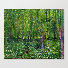 Vincent Van Gogh Trees & Underwood Canvas Print