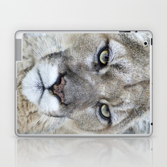 Intensity Laptop & iPad Skin