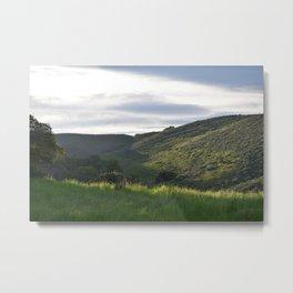 Kissed by the Sun (Santa Teresa State Park) Metal Print