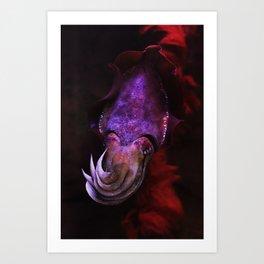 Cuttle Fish Art Print