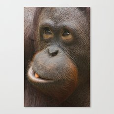 Orangutan Face Canvas Print