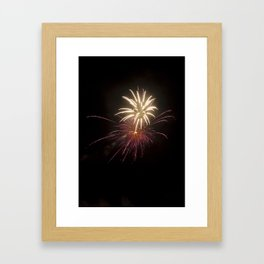 Fireworks on the Fourth - Purple and Gold Framed Art Print
