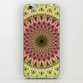Detailed mandala in gold and red ones iPhone Skin