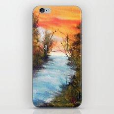 Lazy River iPhone & iPod Skin