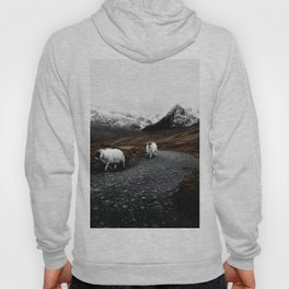 SHEEP - MOUNTAINS - SNOW - ROAD - PHOTOGRAPHY - FUNNY Hoody