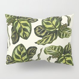 calathea botanical interior plant Pillow Sham