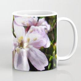 Watercolor Flower, Moss Campion 01, St Mary's Glacier, Colorado Coffee Mug