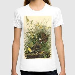 Meadow Lark (Sturnella magna) T-shirt