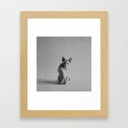 Montster #2 Framed Art Print