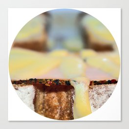 food shot Canvas Print
