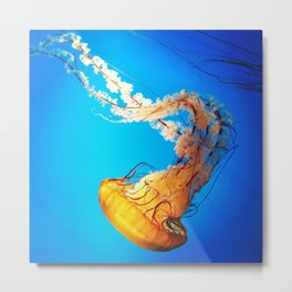 Golden Jellyfish Metal Print