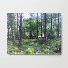 Moss Blanket Metal Print