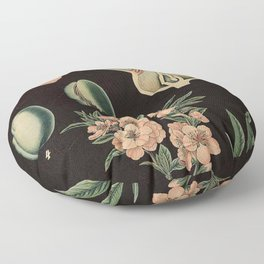 Botanical Almond Floor Pillow