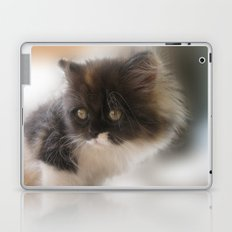 Nano Baby Kitten Laptop & iPad Skin