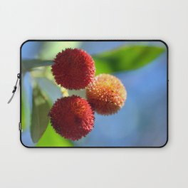 Strawberry tree fruits 8697b Laptop Sleeve