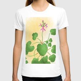 pelargonium grossularioides- fruit/coconut scented leaf T-shirt