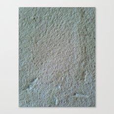 Finca texture Canvas Print