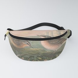 011 Water Pipit anthus spinoletta4 Fanny Pack