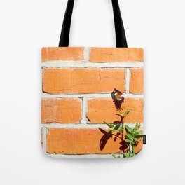The poetry of ordinary things Tote Bag