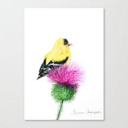 Little Goldfinch by Teresa Thompson Canvas Print