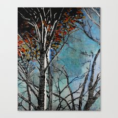 Land of the Silver Birch Canvas Print