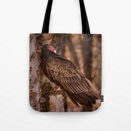 Turkey Vulture In Birch Tree Tote Bag