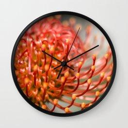 Exotic Pin Cushion Protea Flower- Botanical Photography #Society6 Wall Clock