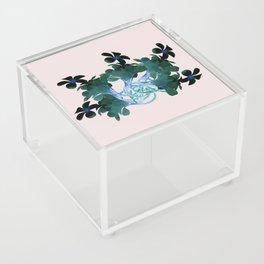 Marine halo Acrylic Box