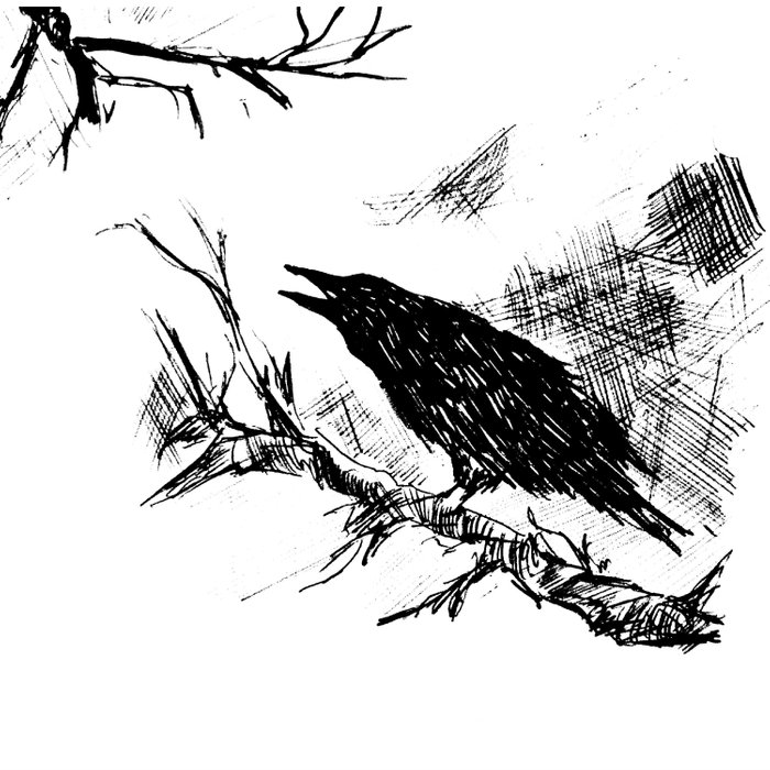 Crow edit version 2 Duvet Cover