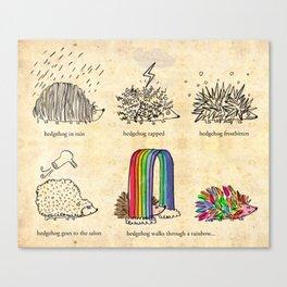 hedgehog goes rainbow Canvas Print