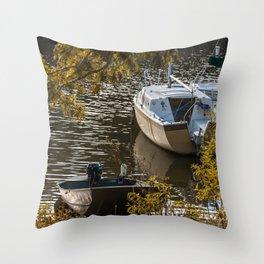 DN69 Throw Pillow