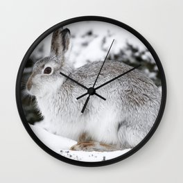 The white beast Wall Clock