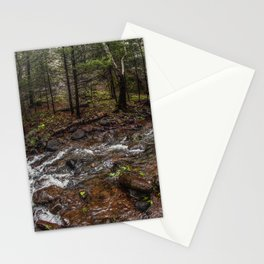 River Mexico Stationery Cards