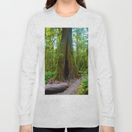 Cathedral Grove on Vancouver Island, BC Long Sleeve T-shirt