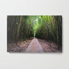 Bamboo Boardwalk on Maui Metal Print