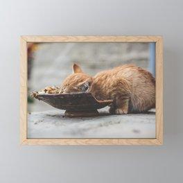 Lunch Time Framed Mini Art Print